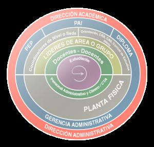 organigrama-circulo